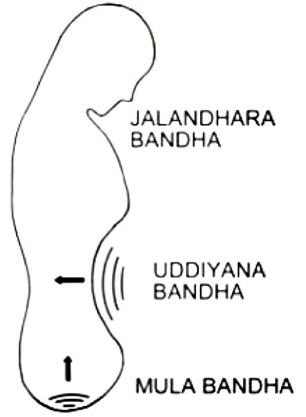 Три Бандхи